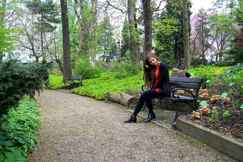 ogrod botaniczny